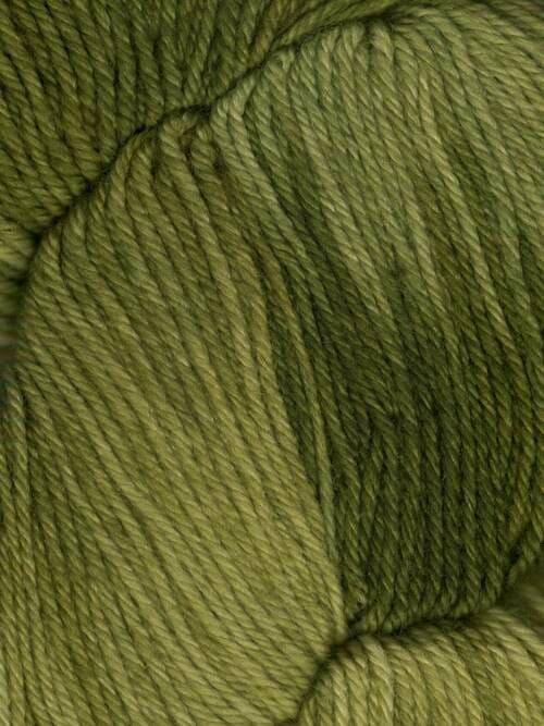 Araucania Huasco Sock Kettle Dyes matassa 1002 Cardamon: filato pregiato tinto a mano in lana merino - Amici di Maglia