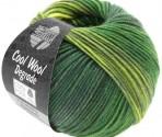Cool Wool Degradé